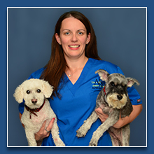 Staff at Abell Animal Hospital