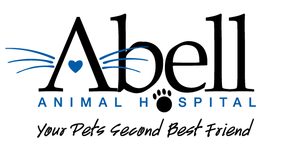 Animal hospital serving Norwood Park, Park Ridge, Norridge, Harwood Heights, Niles