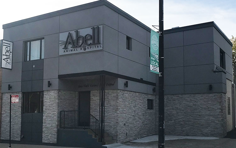 Emergency Information for Abell Animal Hospital