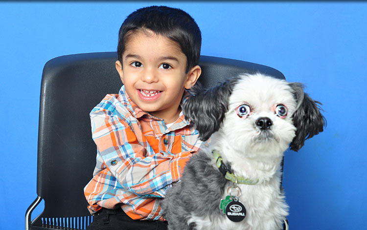 Abell Animal Hospital Pet Owner Resources